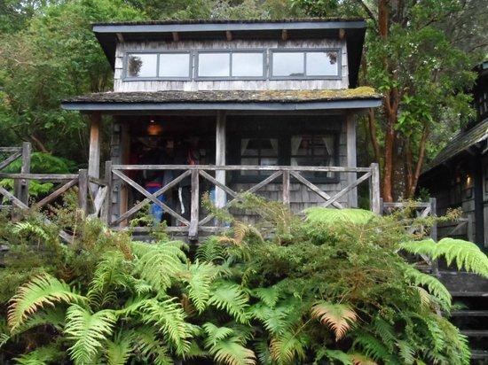 Parque Pumalin - Cabanas Caleta Gonzalo : Cabañas