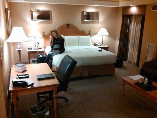 Ambassador Hotel: King Deluxe Room