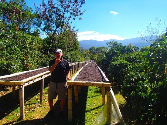 Boquete Coffee Tour : Rich