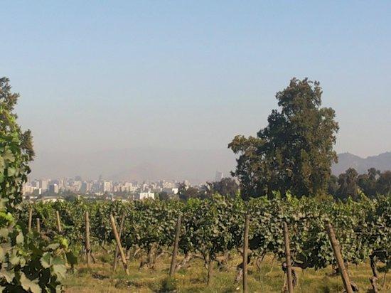 La Bicicleta Verde : A vinícola é de fácil acesso, dá pra ver a cidade de lá