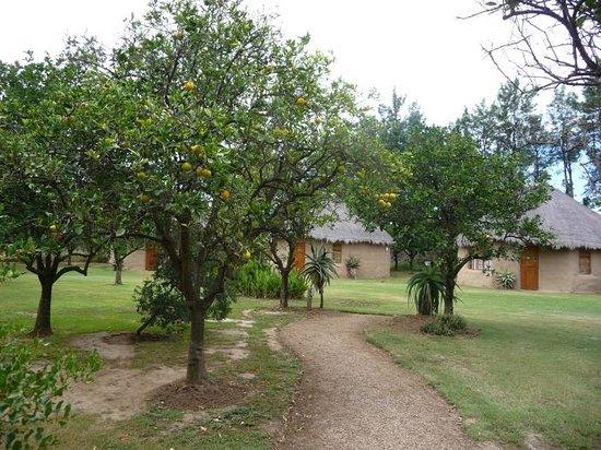 Chrislin African Lodge: Unterkunft von aussen