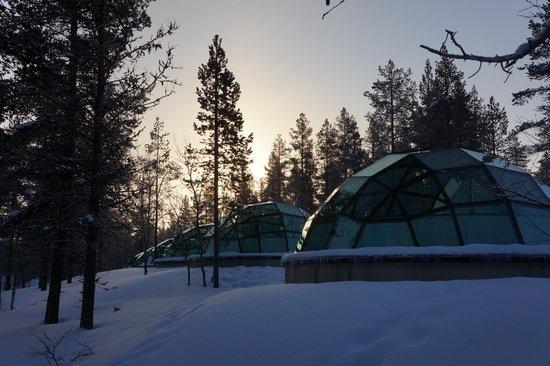 Kakslauttanen Arctic Resort : The glass igloos