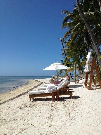 Little Palm Island Resort & Spa, A Noble House Resort : Beach Shot
