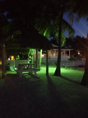 Amoray Dive Resort: Sitting on the dock of the bay