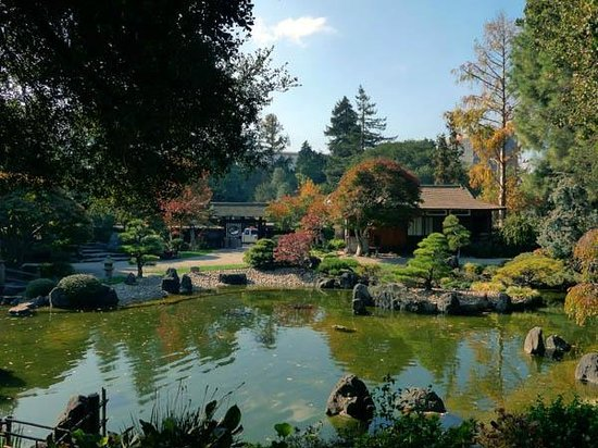 The San Mateo Japanese Garden: Full view