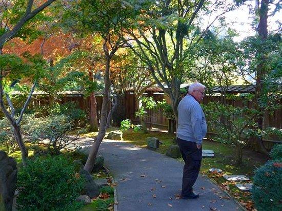 The San Mateo Japanese Garden: Stroll route