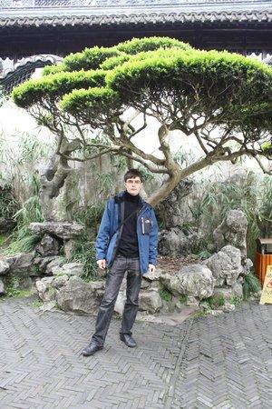 Humble Administrator's Garden: красота