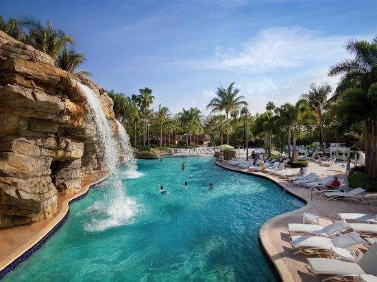 Seminole Hard Rock Hotel Deals