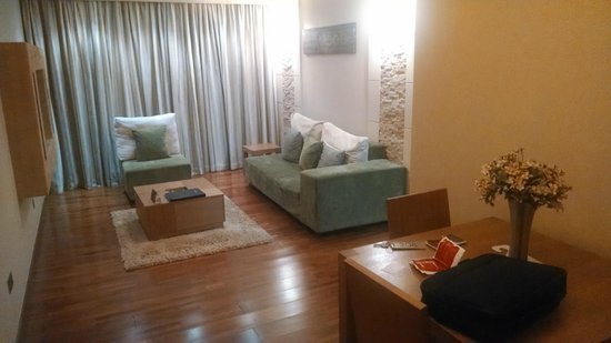 Reata Serviced Apartments: Apartment Living area