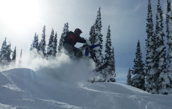 Golden Snowmobile Rentals & Tours: first time on a timbersled