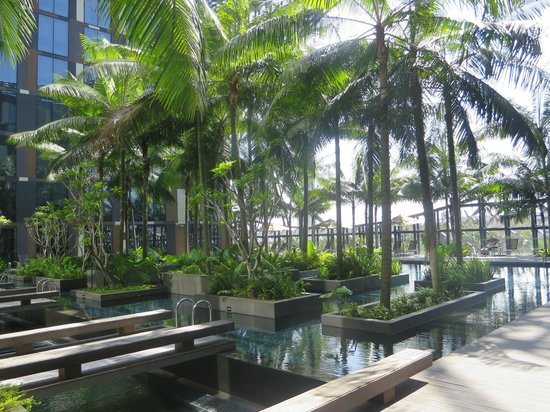 Crowne Plaza Changi Airport : Pool