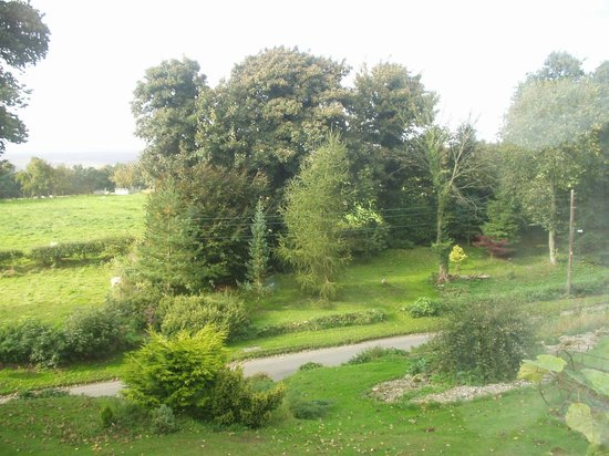 High Farm Bed and Breakfast: View from Bedroom