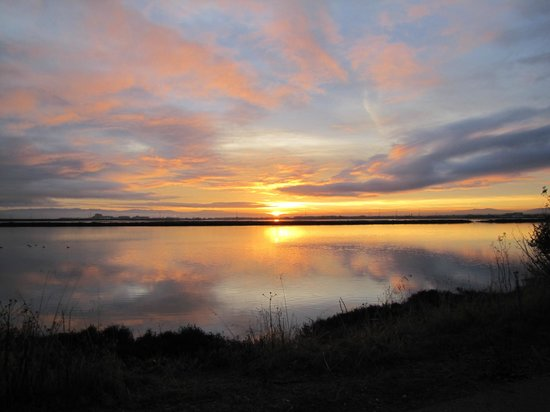 TownePlace Suites Redwood City Redwood Shores: Sunrise over Steinberger Slough