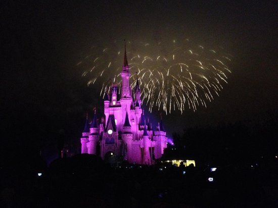 Happily Ever After Fireworks: Amazing!!