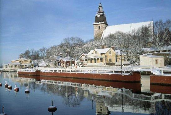 Ravintola Sointu: Turku enero 2014