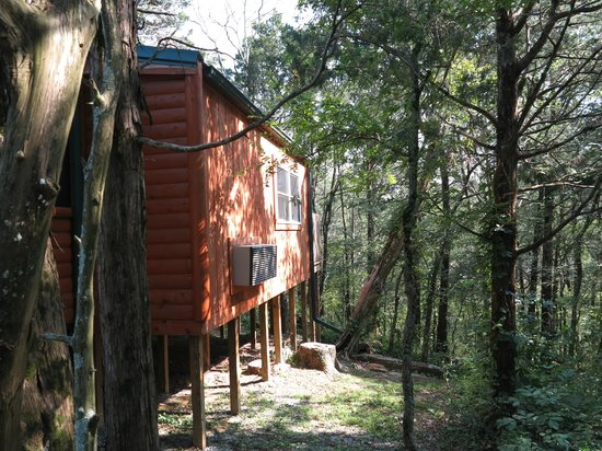 Rim Rock's Dogwood Cabins: Bear's Den - Outside