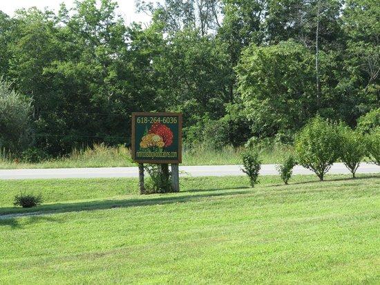 Rim Rock's Dogwood Cabins: Sign
