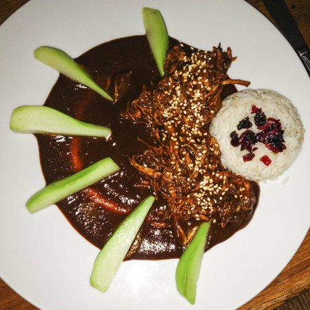 Los Danzantes: shredded mexican turkey in red mole with chayote