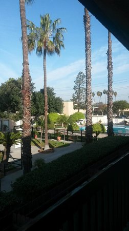 The Anaheim Hotel : Balcony view of grounds and pool