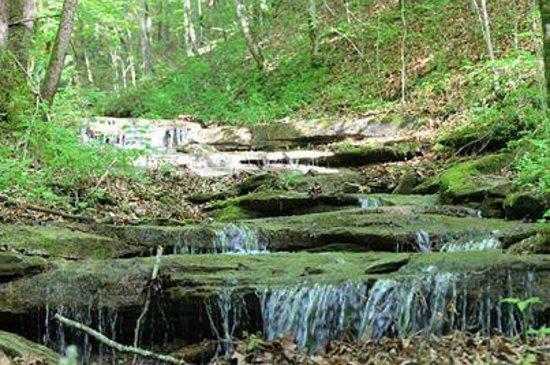 Deep Valley Campground: Creek