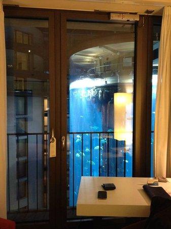 Aquarium view from room on 6th floor picture of radisson for Floor aquarium