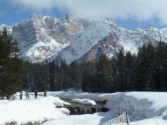 Hotel Alpenrose: The beautiful Dolomites