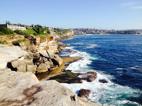 Bondi to Coogee Beach Coastal Walk: Coogee to Bondi walk