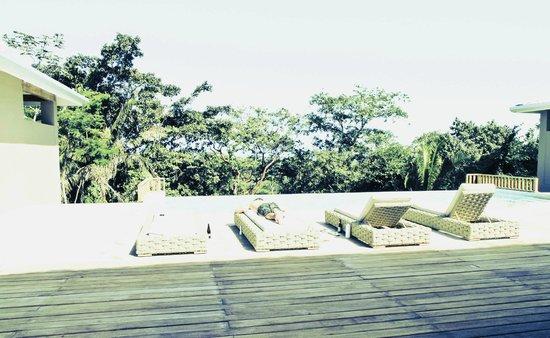 Belcampo Lodge : Pool outside room
