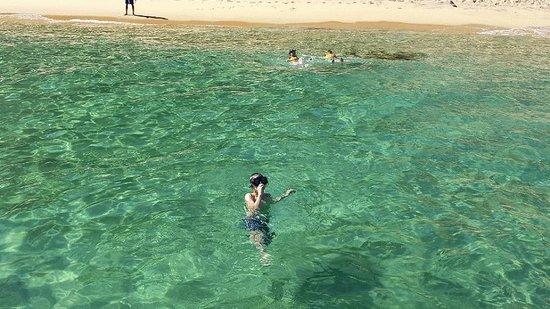 Cabo San Lucas Tours: Near Lover's Beach, Cabo San Lucas