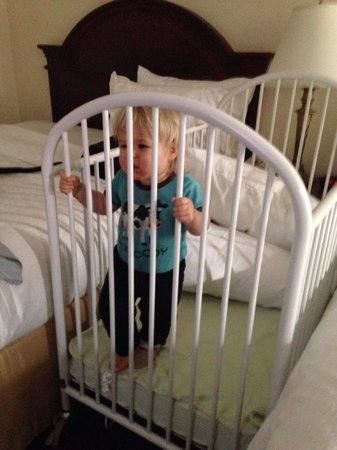 Holiday Inn Winnipeg South: This is the crib they gave us. Worked very well!