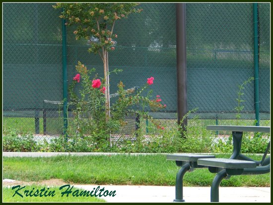 Hulda Crooks Park: Outside the lit tennis courts
