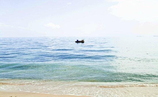 Turtle Inn: Beach