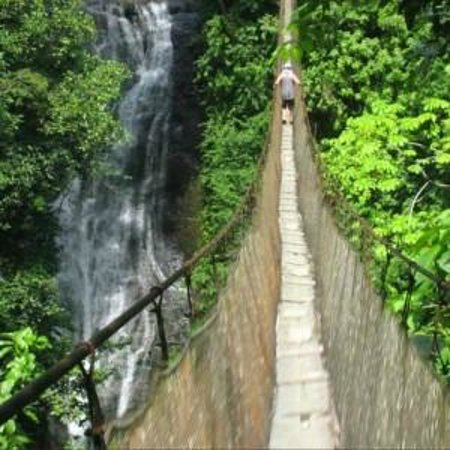 Los Campesinos Ecolodge: Suspension Bridge over the valley of waterfalls