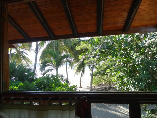 Samara Tree House Inn: view from 5
