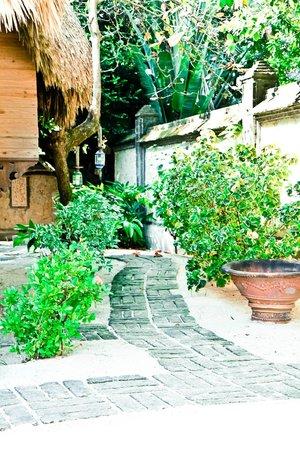 Turtle Inn: Garden Pathway