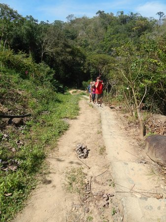 Vallarta Botanical Gardens: Jaguar Trail