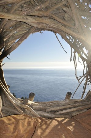 Treebones Resort: View from inside the Human Nest
