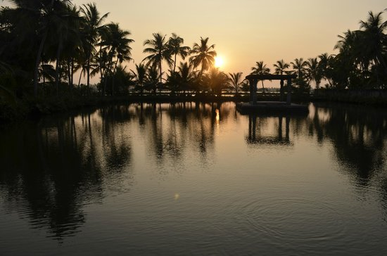 Shravanam Greens : View from the room, backwaters watching sunset