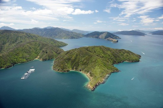Seafood Odyssea Cruise: Queen Charlotte Sound