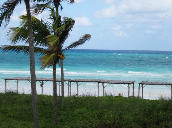 TRYP Cayo Coco: View from our patio