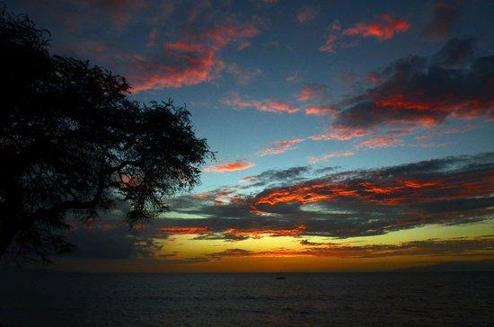 Kamaole Beach Park II : Kam II sunset