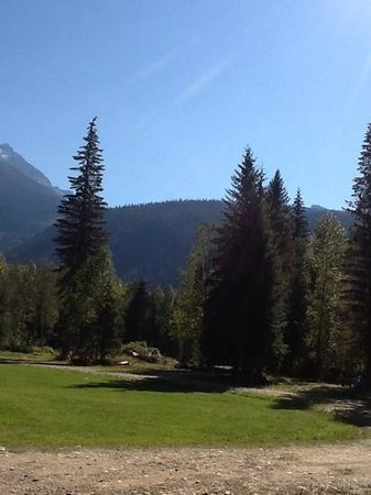 Bone Creek Wilderness Retreat : view of yard from our cabin