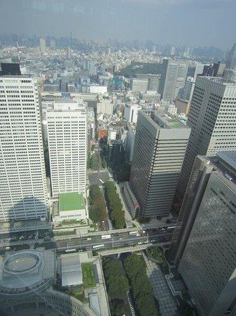 Tokyo Metropolitan Government Buildings : Vista dall'alto