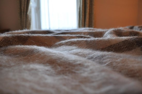 McCraes B&B: Some of the softest blankets I've ever felt-- hard to get out of bed :)