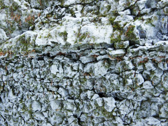 Maligne Adventures: Frost forming on rocks