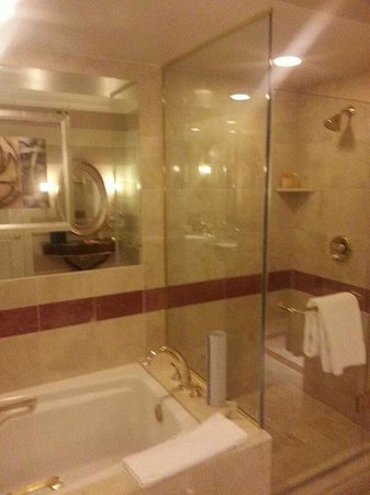 Venetian Resort Hotel Casino: Bathroom in the Suite