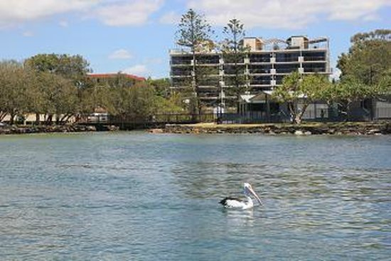 Sails Resort on Golden Beach : Catch Caloundra Cruises here 200 m from Sails