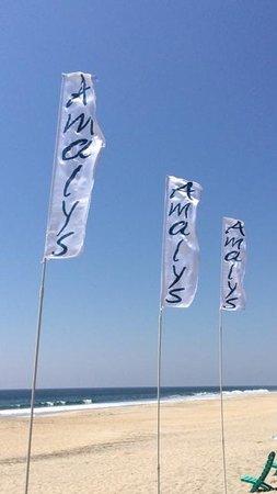 Amalys Luxury Resort: VUE OF THE BEACH