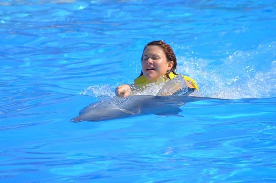 Dolphinaris Barcelo: Swimming with the dolphins