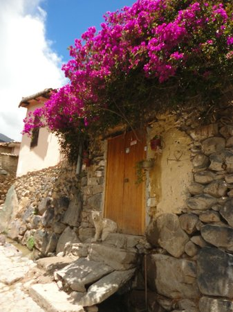 Plazoleta Aracama: ruelas floridas